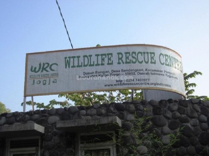 Wildlife Rescue Centre Jogja