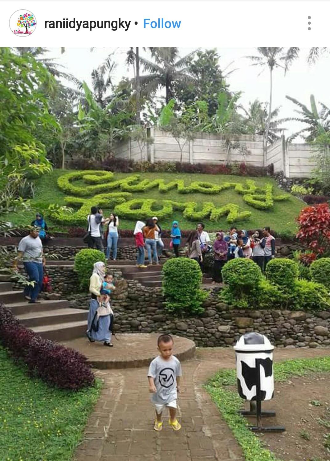 Cimory Mountain View Kids Holiday Spots Liburan Anak