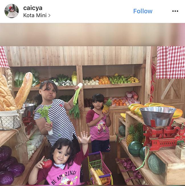 Rumah Kucing Bandung Lembang Rumah Guguk Surga Hewan