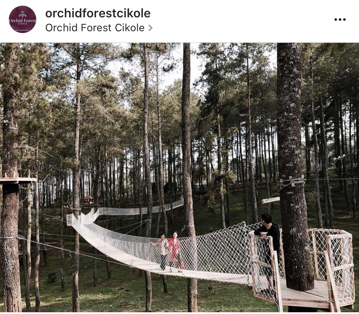 Orchid Forest Cikole Kids Holiday Spots Liburan Anak Informasi