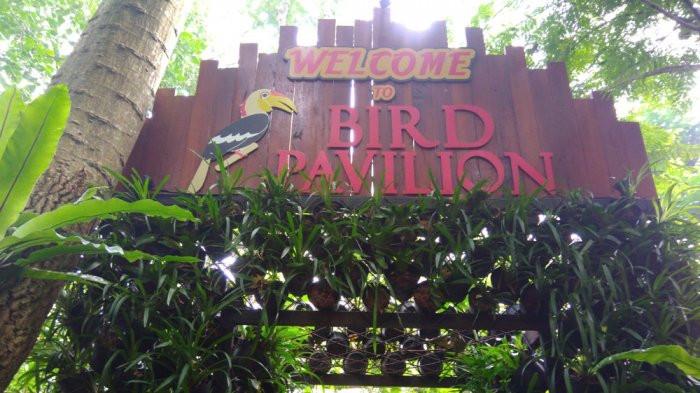Taman Burung di Bandung: Bird & Bromelia Pavilion