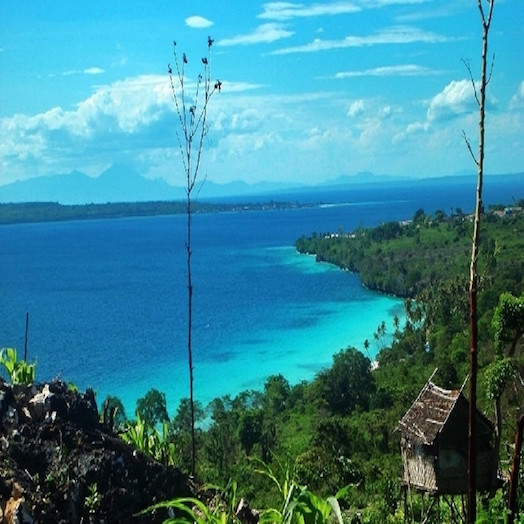 Pulau Buton