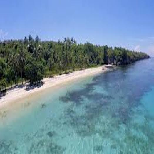 Pantai Pallipis