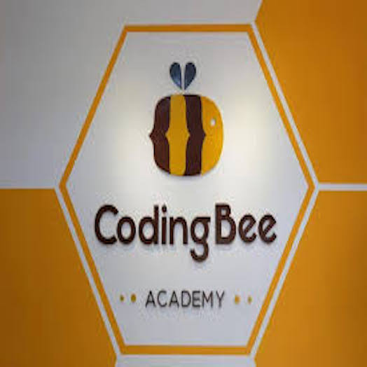 Coding bee Academy SDC