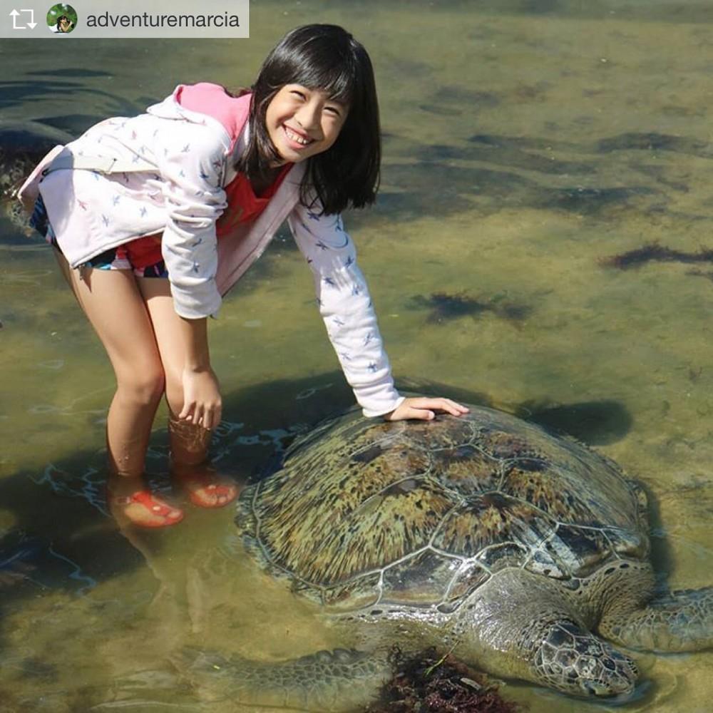 Turtle Island Tanjung Benoa