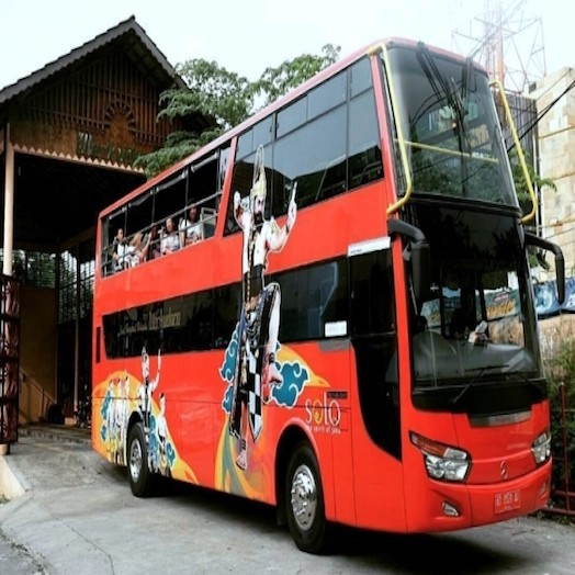 Naik Bus Satwa ke Taman Satwa